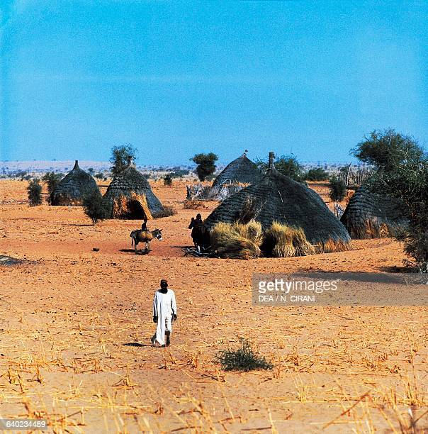 Huts in the Tebu village of Kanem Sahel Chad