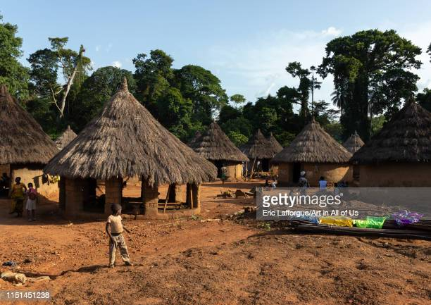 Huts with thatched roofs Bafing Gboni Ivory Coast on May 5 2019 in Gboni Ivory Coast