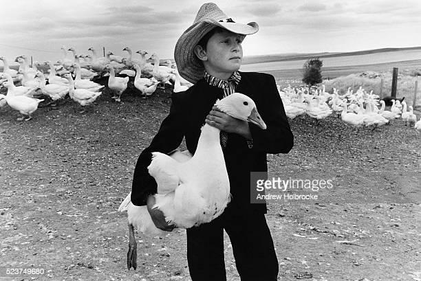 hutterite boy with goose - hutteriter bildbanksfoton och bilder