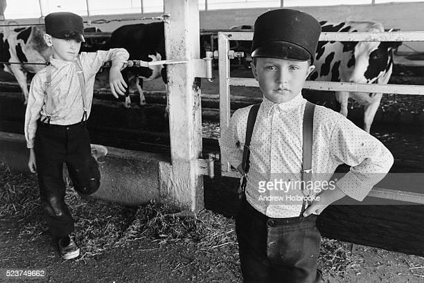 hutterite boys in the barn - hutteriter bildbanksfoton och bilder