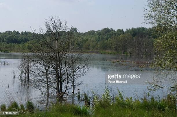 Huvenhoopssee , Naturschutzgebiet Huvenhoopsmoor, Landkreis Rotenburg / Wümme, Niedersachsen, Deutschland, Europa, Moor, Natur, Reise,