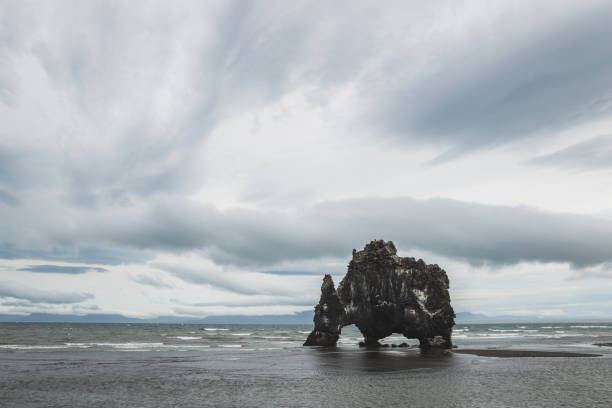Hvitserkur stone rock in mammoth shape in Vatnsnes peninsula in Iceland Hunafloi bay
