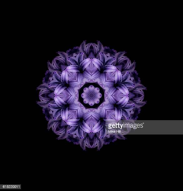 Hyacinth Flower Mandala