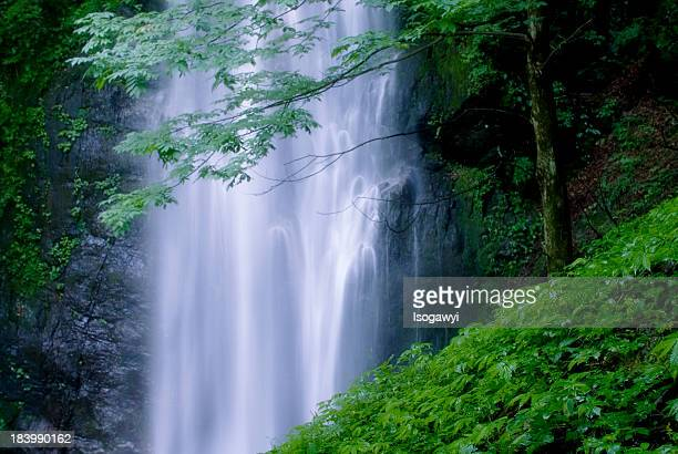 hyakuhiro falls - isogawyi stock pictures, royalty-free photos & images