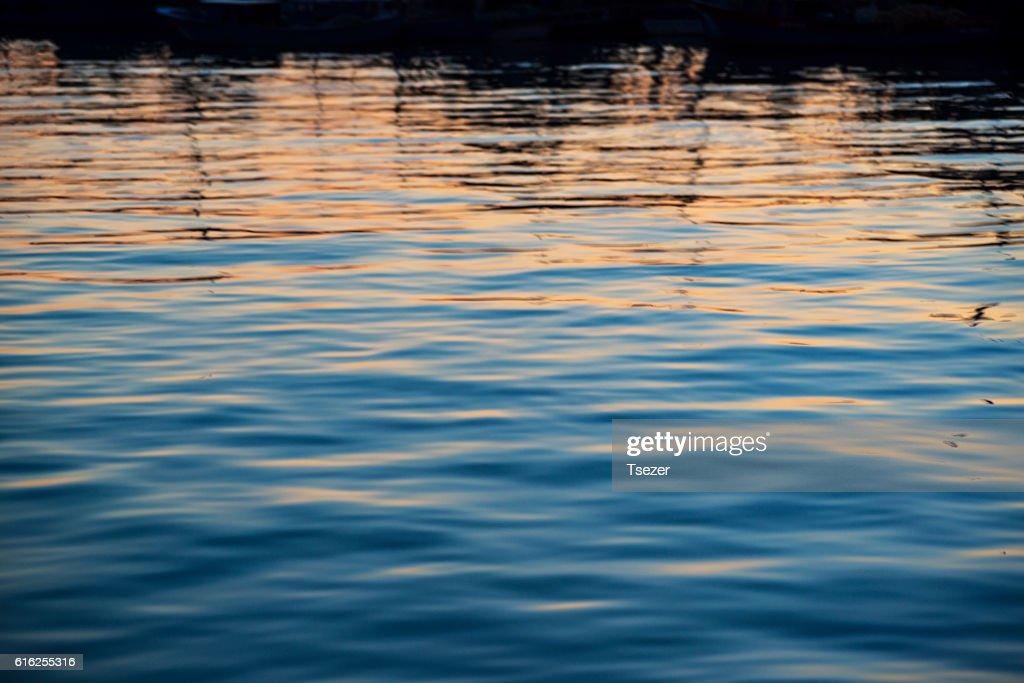 Hyaline (sea) : Foto de stock