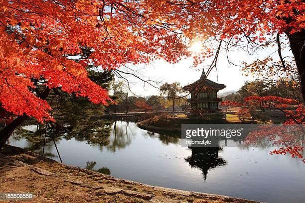 Hyangwonjeong Pavillon im Herbst