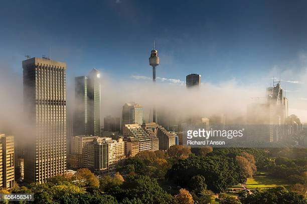 Hyde Park & city in early morning fog