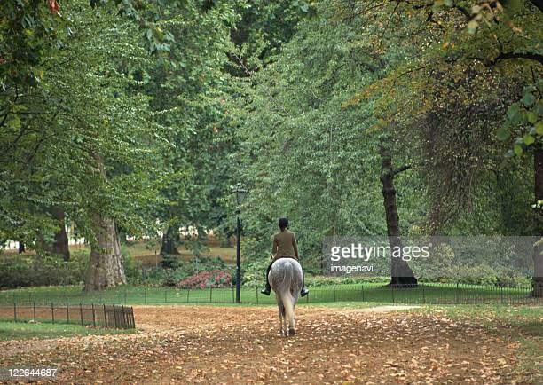 hyde park - hyde park london stock pictures, royalty-free photos & images
