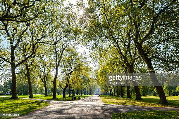 hyde park - public park stock pictures, royalty-free photos & images