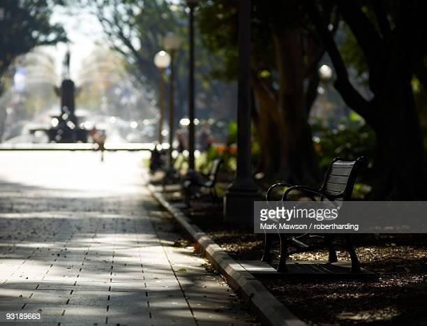 Hyde Park, Sydney, New South Wales, Australia, Pacific