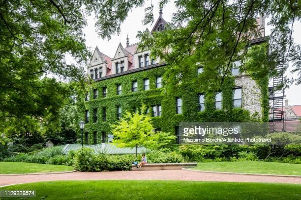 hyde park, university of chicago - シカゴ大学 ストックフォトと画像