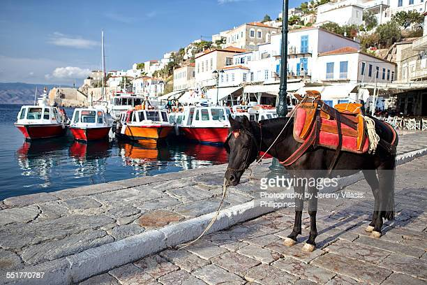 hydra, greece - hydra greece stock photos and pictures