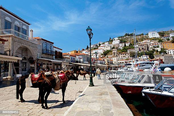 hydra island, greece - hydra greece photos stock pictures, royalty-free photos & images
