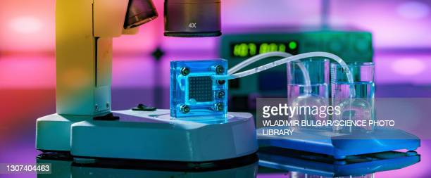 hydrogen fuel cell - fuel cell stock pictures, royalty-free photos & images