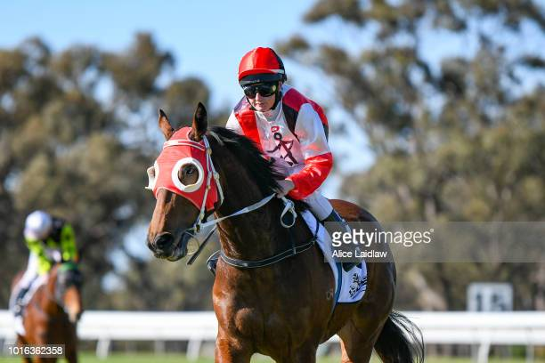Hypermarionation ridden by Chelsea Hall returns to scale after winning the Save the Date Sun Oct 21st Maiden Plate at Warracknabeal Racecourse on...