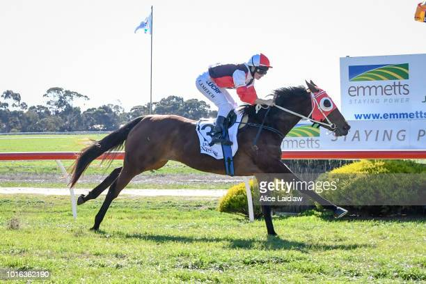 Hypermarionation ridden by Chelsea Hall wins the Save the Date Sun Oct 21st Maiden Plate at Warracknabeal Racecourse on August 14 2018 in...