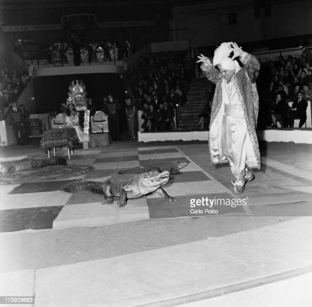 Hypnotist Karah Khawak puts two crocodiles into a trance during his act at a circus in Munich Germany 18th February 1965 Khawak is a former liontamer