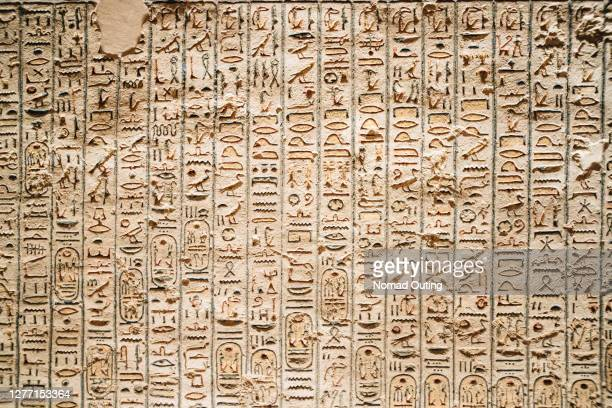 hyroglifics texture on the wall inside pharaoh ruins. - pharaoh stock pictures, royalty-free photos & images