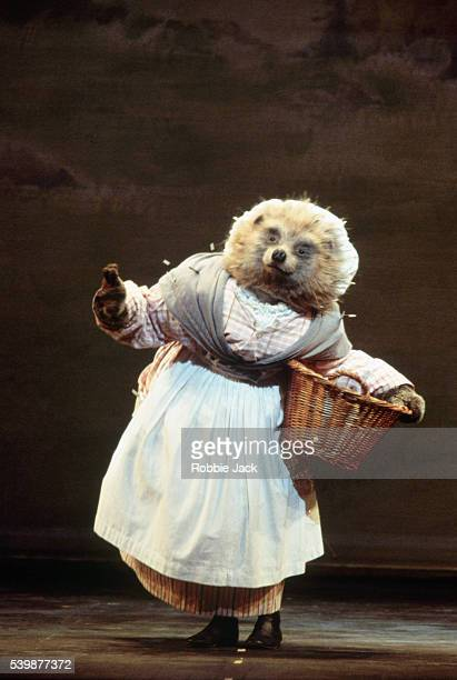 Iain Webb as Mrs Tiggywinkle in the Royal Ballet production of Tales of Beatrix Potter