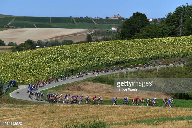 Ian Garrison of United States and Team Deceuninck QuickStep / Florian Vermeersch of Belgium and Team Lotto Soudal / Peloton / Landscape / Sunflowers...