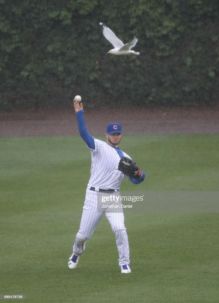 Ian Happ #8 of the Chicago Cubs throws a relay to the infield as a seagull flies past against the Milwaukee Brewers in the 5th inning at Wrigley Field on May 19, 2017 in Chicago, Illinois.