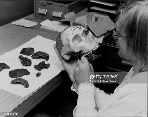 Ian Langham of the History and Philosophy Science Dept at Sydney University Holding a Hunter restoration of the 1912 Piltdown man made from copies of...