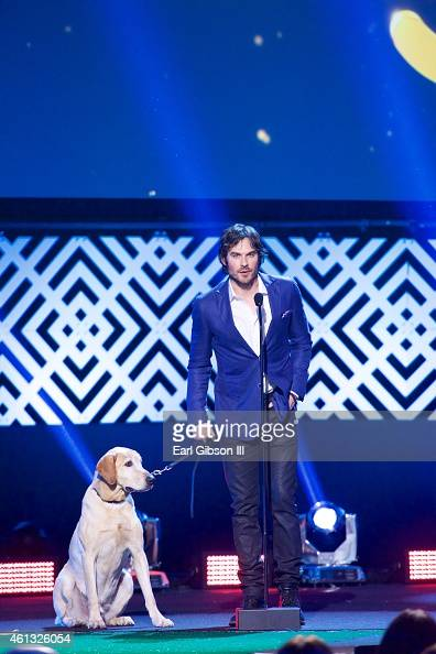ian somerhalder receives the dogs best friend award at the world