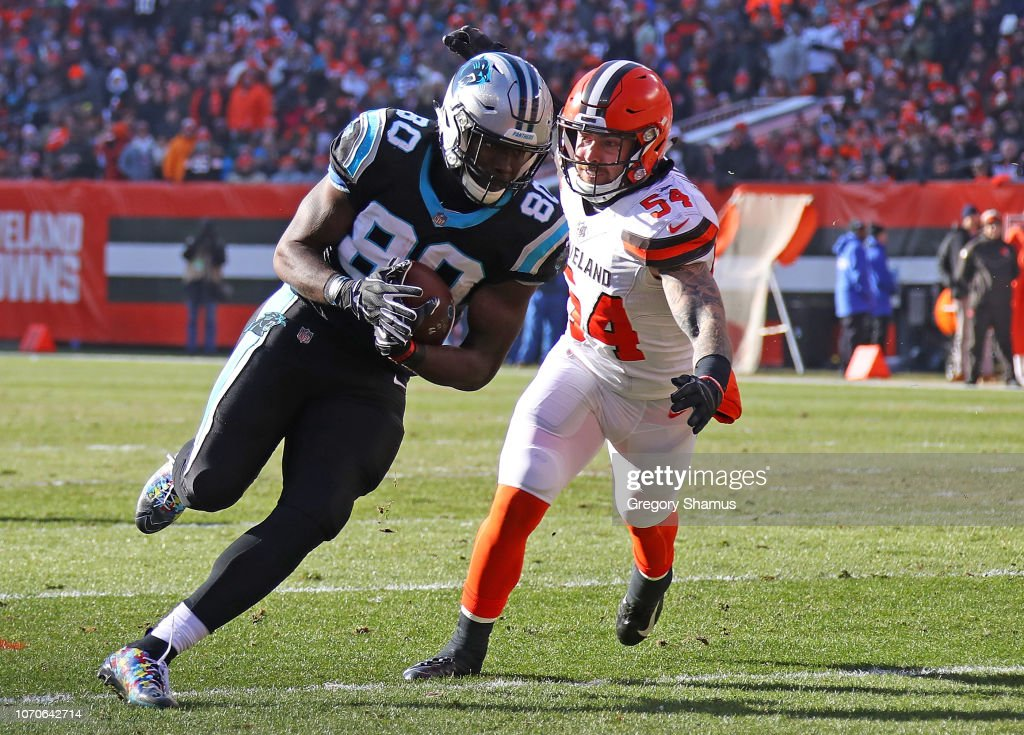 Carolina Panthers v Cleveland Browns : News Photo