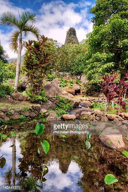 iao needle and iao valley in maui - phil haber stock pictures, royalty-free photos & images