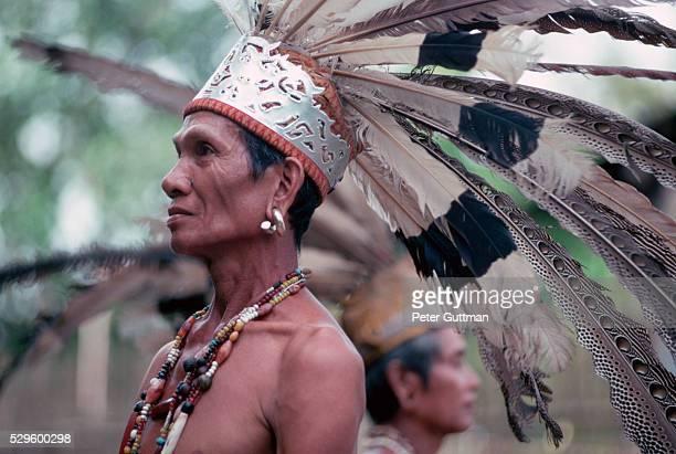 Iban Warrior Wearing Headdress of Feathers