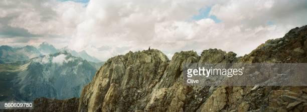 ibex on the top of italian mountain, Maira Valley, August 2017