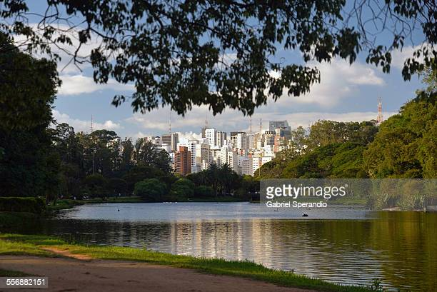 Ibirapuera and São Paulo Skyline