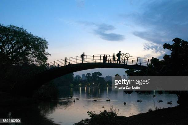 ibirapuera park lake bridge - ibirapuera park stock pictures, royalty-free photos & images
