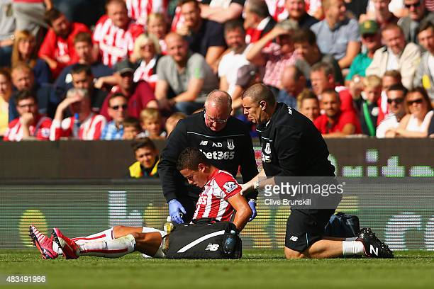 Ibrahim Afellay of Stoke City is given treatment during the Barclays Premier League match between Stoke City and Liverpool at Brittania Stadium on...