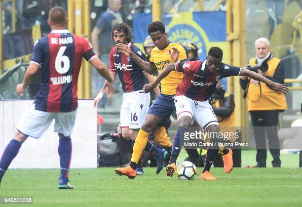 Ibrahima Mbaye of Bologna FC in action during the serie A match between Bologna FC and Hellas Verona FC at Stadio Renato Dall'Ara on April 15 2018 in...