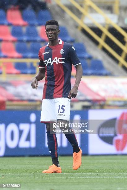 Ibrahima Mbaye of Bologna FC looks on during the serie A match between Bologna FC and Hellas Verona FC at Stadio Renato Dall'Ara on April 15 2018 in...