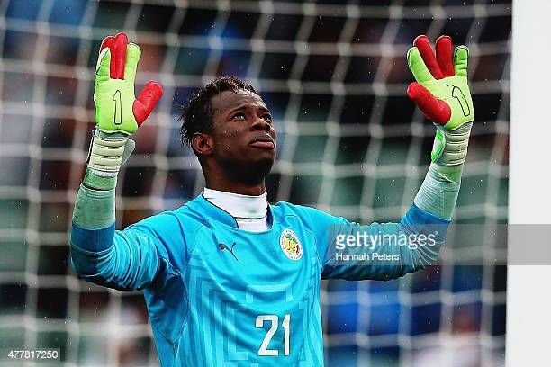 Ibrahima Sy of Senegal celebrates after saving a penalty goal during the FIFA U20 World Cup Third Place Playoff match between Senegal and Mali at...