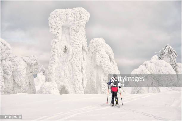 ice age magic winterland, ski touring - norrbotten province stock pictures, royalty-free photos & images