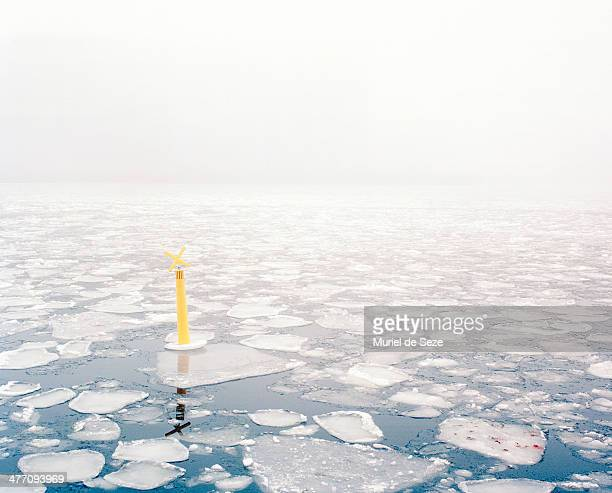 Ice and mist in harbor