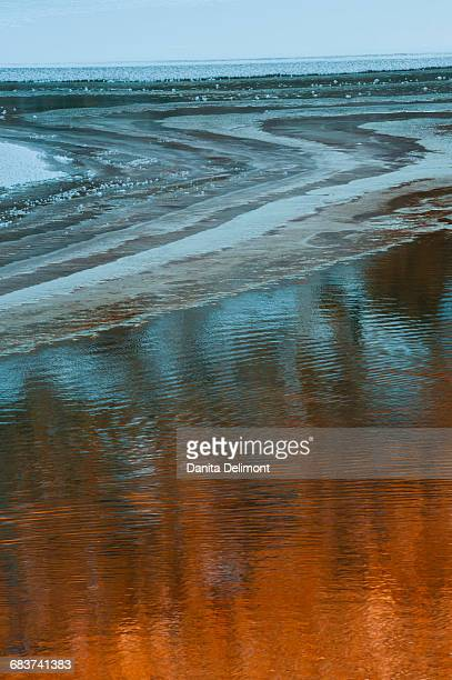 Ice and Rock reflected in Colorado River, Moab, Utah, USA