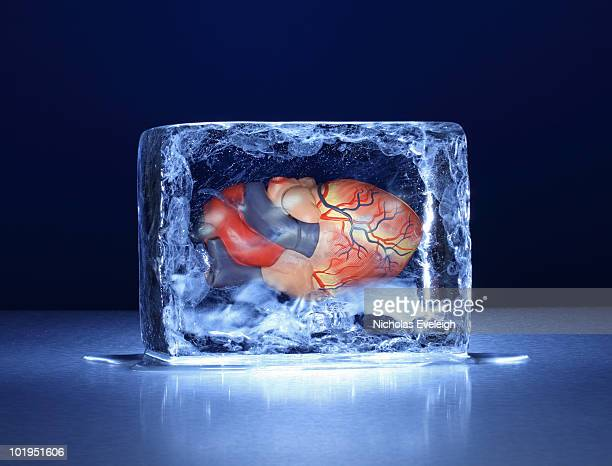 Ice block with human heart inside