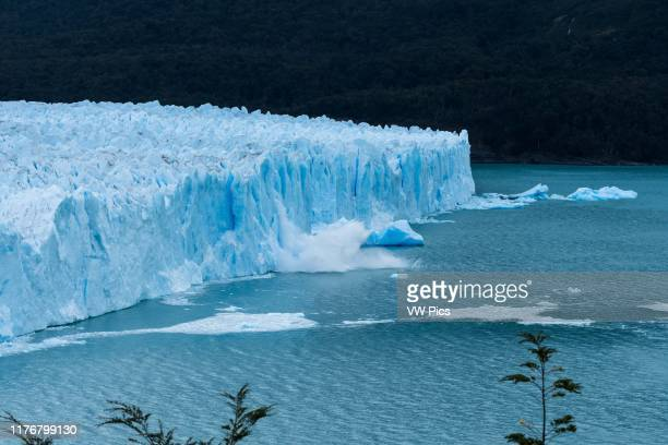 Ice calves off the jagged face of Perito Moreno Glacier and splashes into Lago Argentino in Los Glaciares National Park near El Calafate. Argentina....