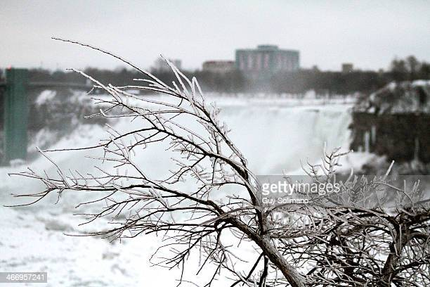 Ice coats the trees on the shoreline of the Niagara River in front of the American side of Niagara Falls on February 5 2014 in Niagara Falls Canada...