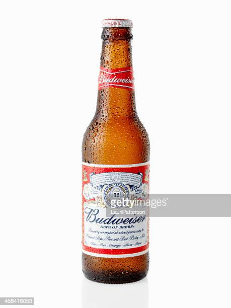 Ice Cold Bottle of Budweiser Beer