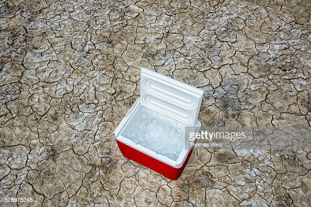 ice cooler in the desert - esky stock photos and pictures