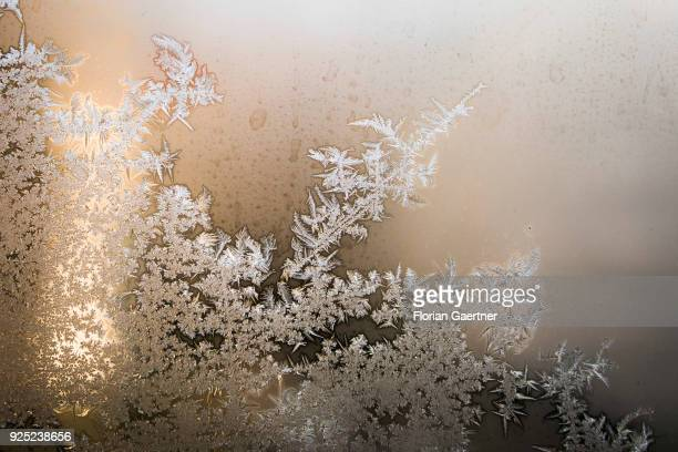Ice crystals at the window are pictured on February 28 2018 in Berlin Germany