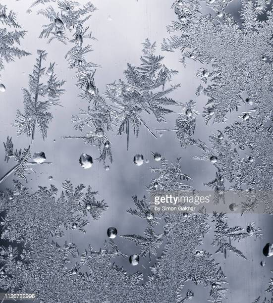 ice crystals on glass - frost stock pictures, royalty-free photos & images