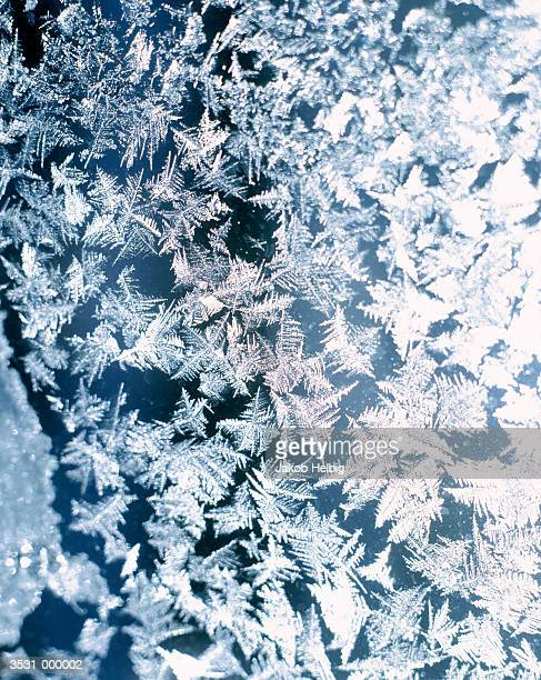 Ice Crystals on Window