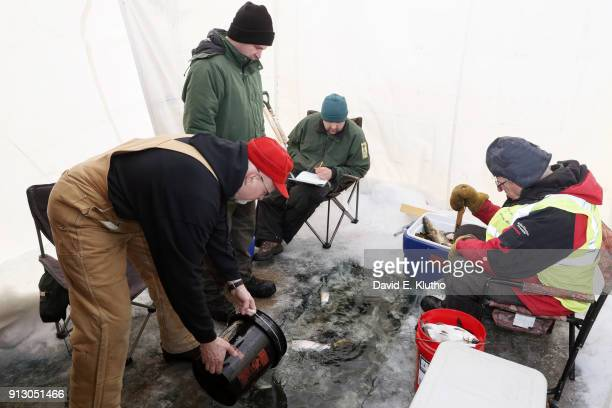 Brainerd Jaycees Ice Fishing Extravaganza Members of the Minnesota Department of Natural Resources oversee the release of fish after weighin during...