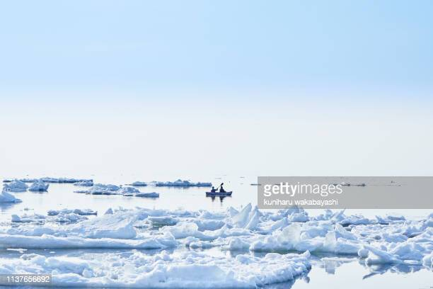ice floe at hokkaido - drift ice stock pictures, royalty-free photos & images